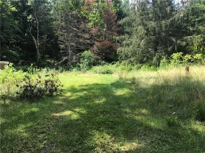 Residential Lots & Land A-Active: 10190 Stones Falls Road