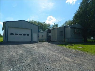 Denmark NY Single Family Home A-Active: $59,000