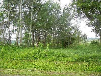 Lowville NY Residential Lots & Land A-Active: $21,000