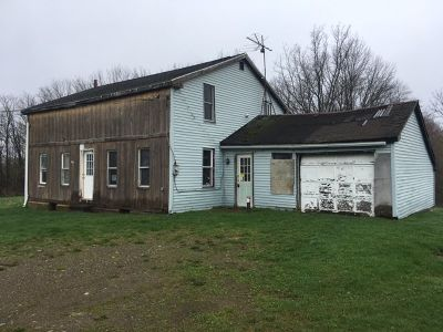 Sherman NY Single Family Home For Sale: $24,900