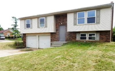 Columbus OH Single Family Home For Sale: $58,300