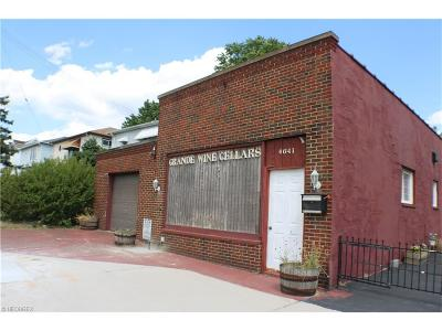 Garfield Heights OH Commercial Sold: $29,200