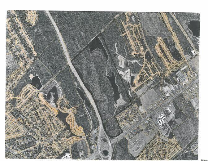 301 Acres Hwy 501