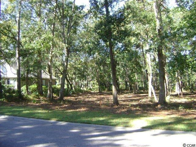 Lot 47 Green Wing Teal Lane