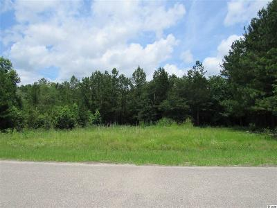 Residential Lots & Land For Sale: 790 Redmond Ct.