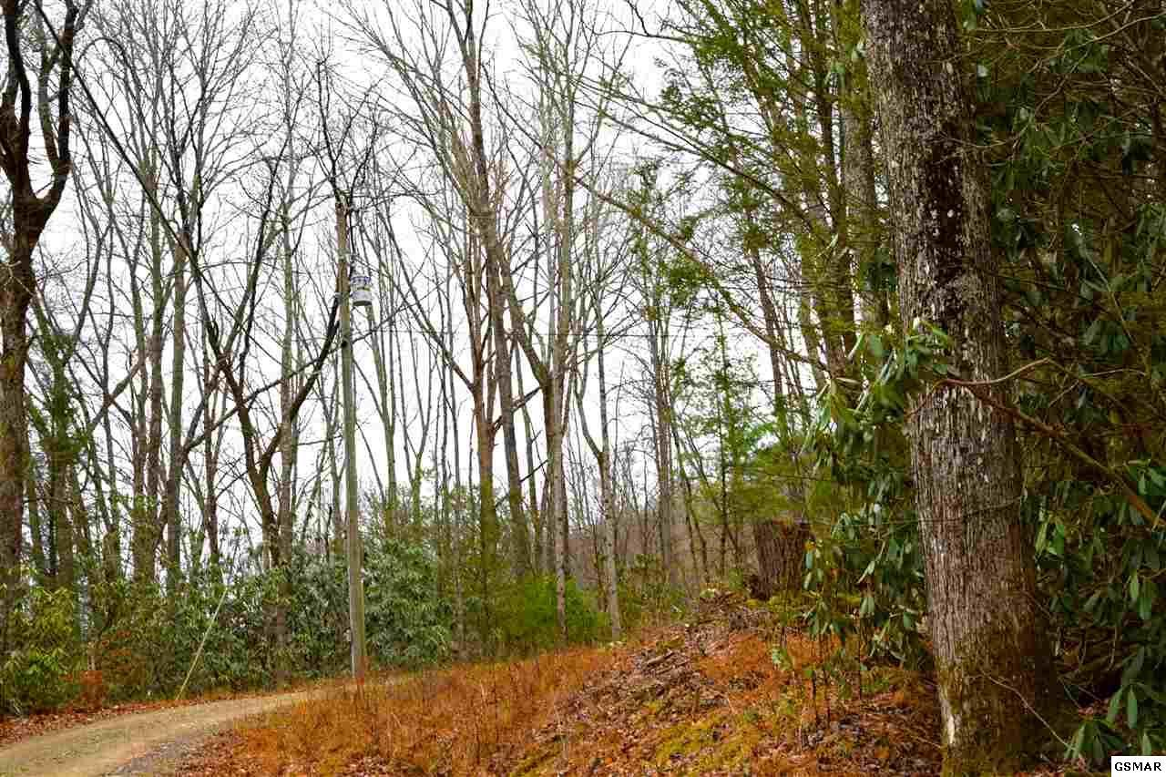 Old Cades Cove Road Lot 1 Townsend Tn Mls 207179