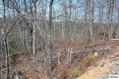 Residential Lots & Land For Sale: Lot 13 Misty Ct