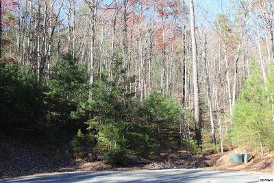 Residential Lots & Land For Sale: Lot 29e Cool Water Ln