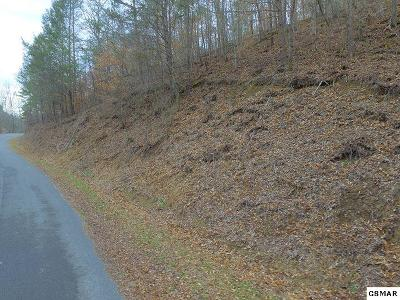 Residential Lots & Land For Sale: Lot 17 Bear Mountain Lane
