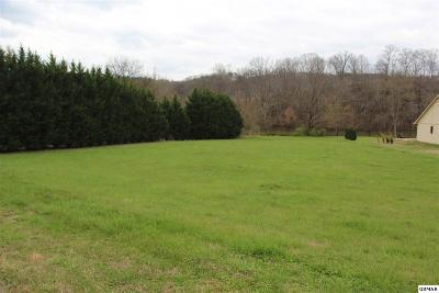 Residential Lots & Land For Sale: 1915 River Mist Circle