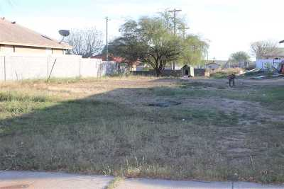 Laredo TX Residential Lots & Land For Sale: $29,900