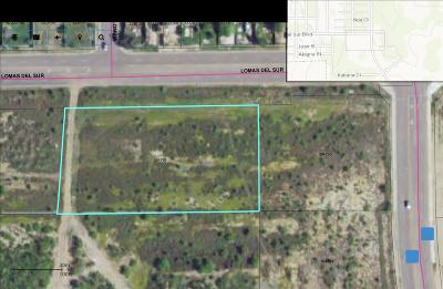 Commercial Lots & Land For Sale: 3115 Lomas Del Sur