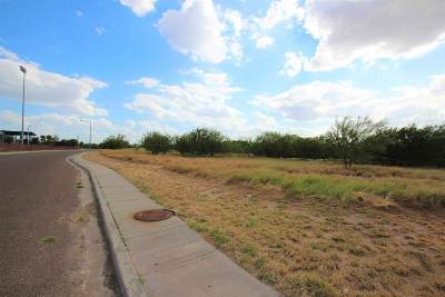 Laredo TX Commercial Lots & Land For Sale: $173,000