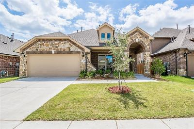 Anna TX Single Family Home For Sale: $285,000