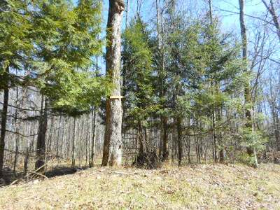 Residential Lots & Land For Sale: On Cth Dd #Lot 1
