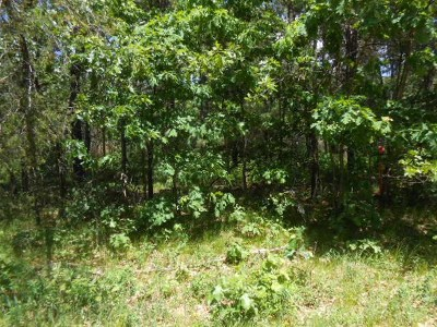 Friendship WI Residential Lots & Land For Sale: $13,900