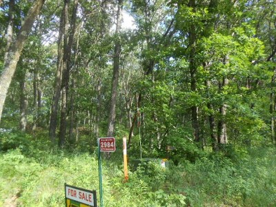 Grand Marsh WI Residential Lots & Land For Sale: $16,000