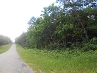 Lyndon Station WI Residential Lots & Land For Sale: $69,900