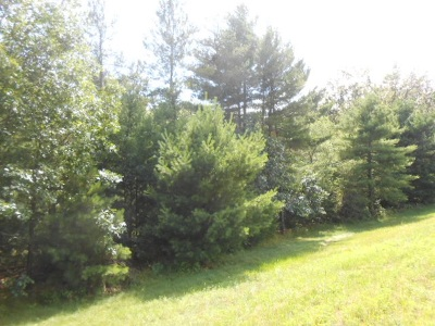 Adams WI Residential Lots & Land For Sale: $39,500