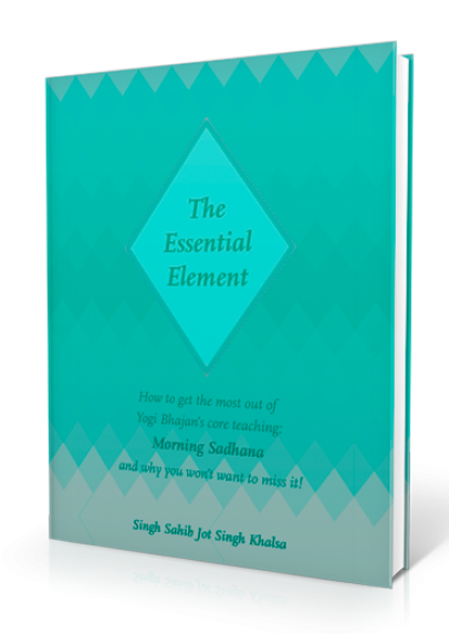 The Essential Element book cover