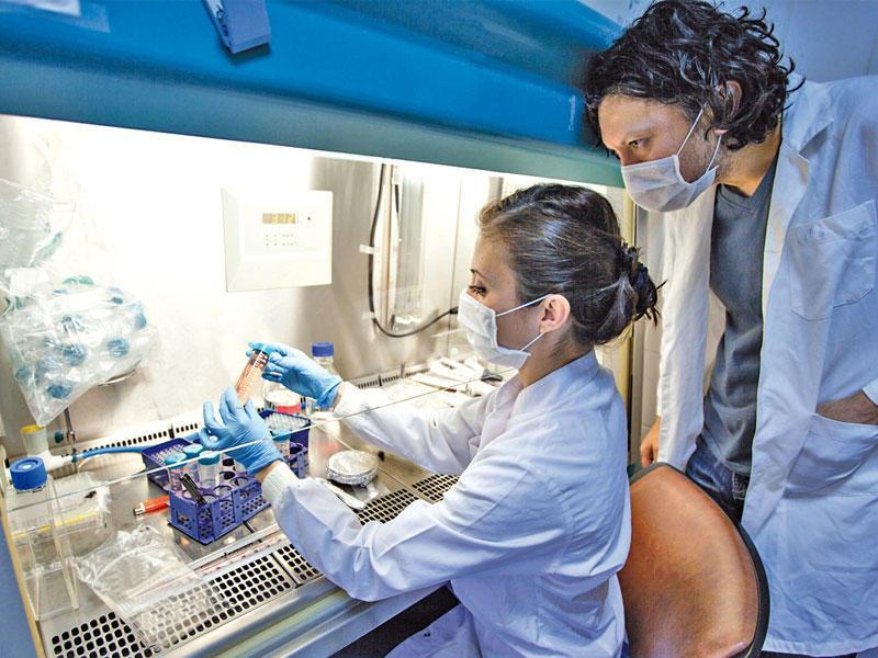 دواء جديد يُحسِّن مفعول علاج السرطان بالأشعة 1280x960
