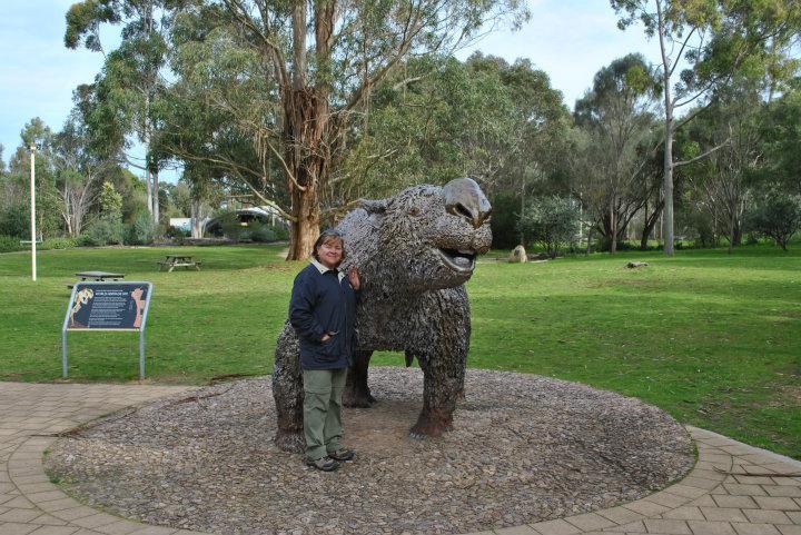 Prehistoric koala