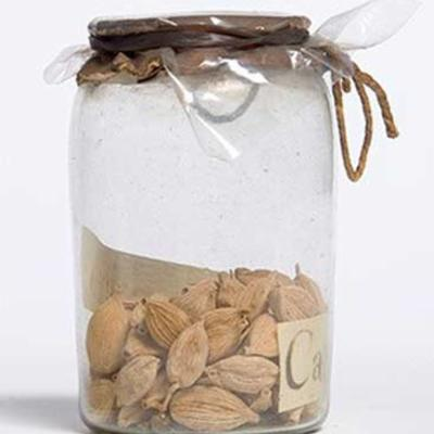 William Maton materia medica jar of cardamom fruits