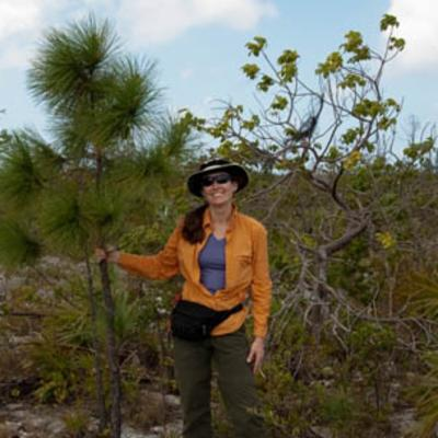 Michele Sanchez checking trees in TCI pine forest
