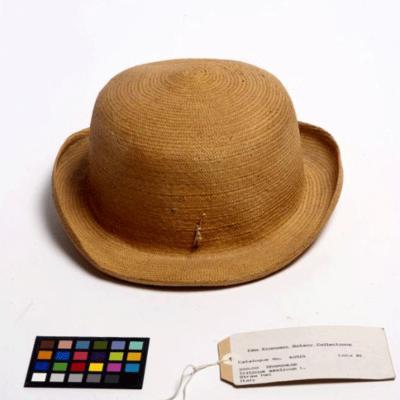 Triticum aestivum (bread wheat) straw hat