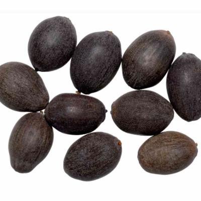Nelumbo nucifera seeds