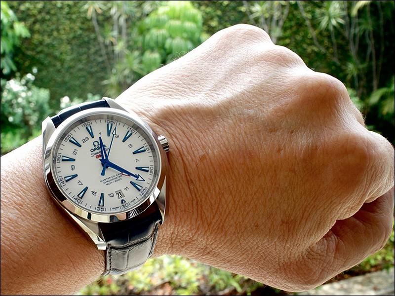 """Omega Seamaster Aqua Terra GoodPlanet Watches""的图片搜索结果"
