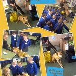 Dogs Trust Visit