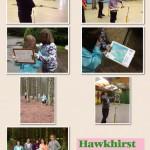 Year 6 Hawkhirst Residential