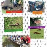 Reception's visit to the Rising Sun Country Park