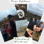 Year 1 's Trip to St. Mary's Lighthouse