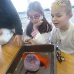 Yr 3-4 Mad Science Day