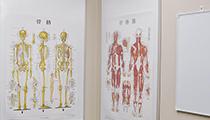 【東京ひざ関節症クリニック】トウキョウヒザカンセツショウクリニック(オフィスワーク)の求人情報