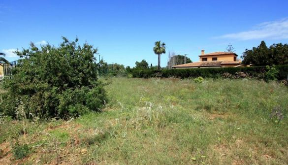 Plot For Sale in Denia-MPA00156