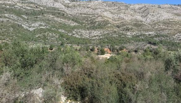 Plot of Land For Sale in Benigembla-MPA17003