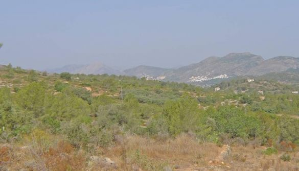 Plot For Sale in Benissa-MPA01797