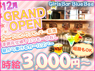 GirlsBar Blue Bee