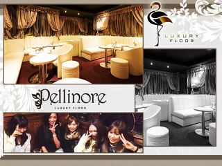 LUXURY FLOOR Pellinore メイン画像