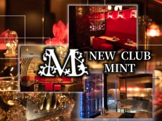NEW CLUB MINT