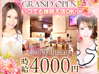 club HONEY BUNNY メイン画像