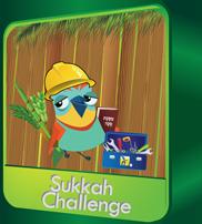sukkah challenge_icon