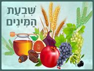 shivat_haminim