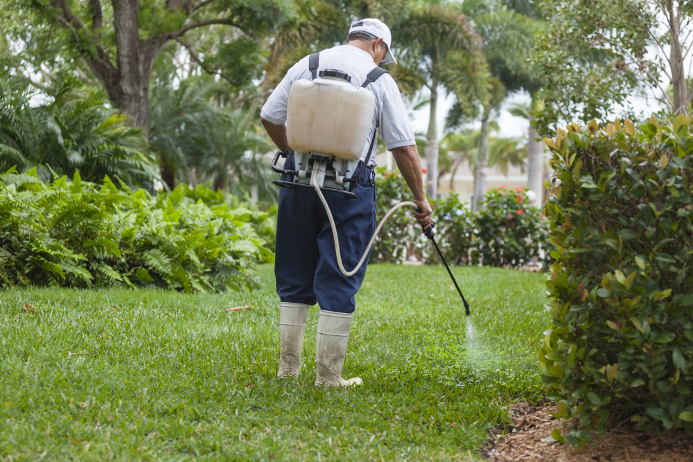 Weed Control & Turf Care