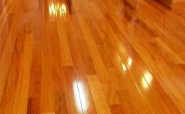 wood floor cleaning service