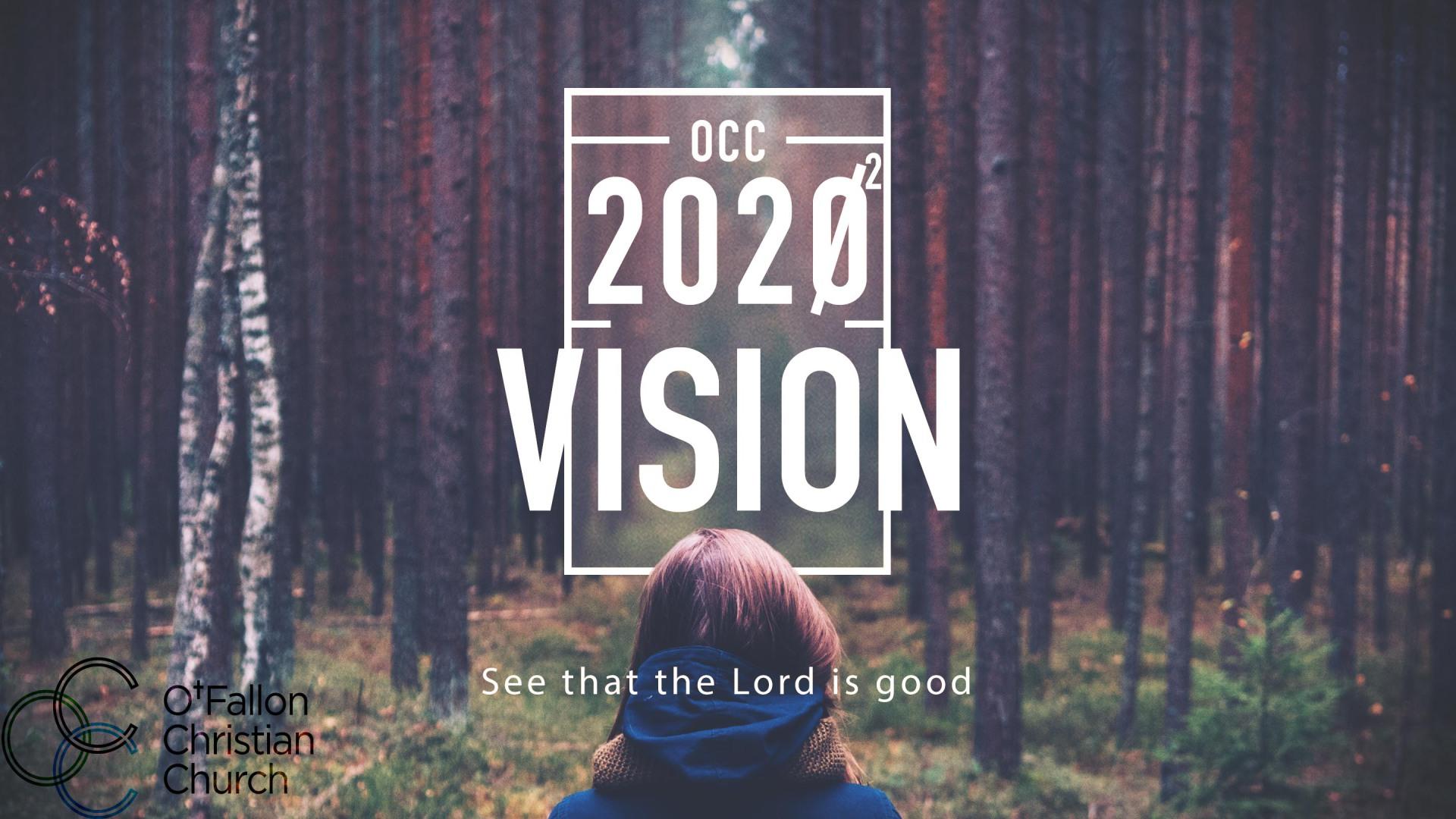 OCC Vision Series - November 2015