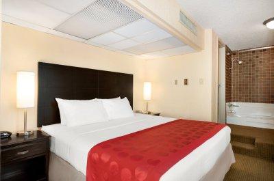 King Suite Hotel Room